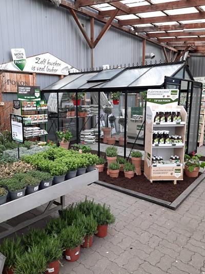 Tuinkassen-tuinkas-broeikas-moestuin-kweken-afdeling-tuingroen-stadskanaal-12