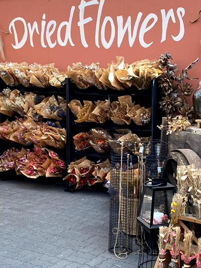 droogbloemen-dried-flowers-tuingroen-stadskanaal-3