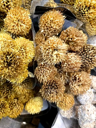 droogbloemen-dried-flowers-tuingroen-stadskanaal-6