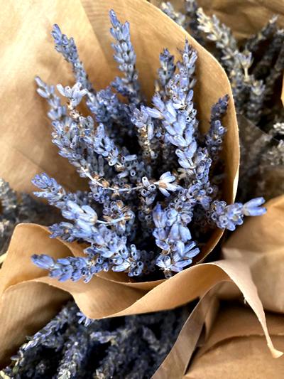 droogbloemen-dried-flowers-tuingroen-stadskanaal-7