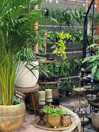 hangplanten-tuingroen-stadskanaal-7