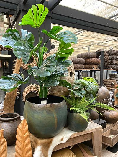 kunst-planten-tuingroen-stadskanaal-2